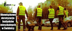 Obowiązkowa deratyzacja budynków mieszkalnych w Świdnicy