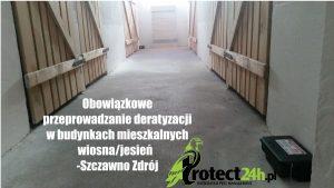 Przeprowadzanie deratyzacji w budynkach mieszkalnych - wiosna/jesień - Szczawno Zdrój