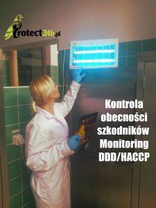 Kontrola obecności szkodników - monitoring DDD/HACCP